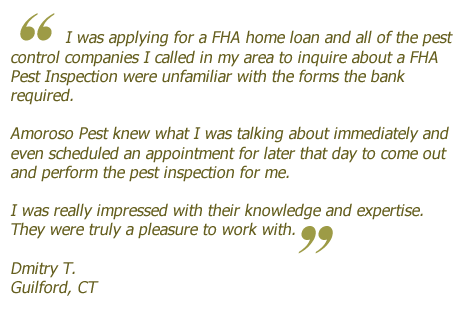 Pest Inspection Client Success Story & Testimonial #5