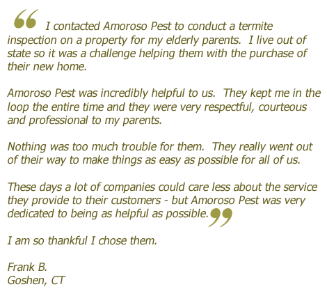 Pest Inspection Client Success Story & Testimonial #8