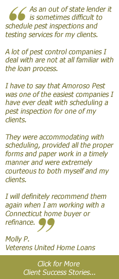 Pest Inspection Client Success Stories
